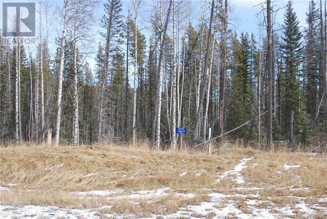 1271 Tamarack Trail