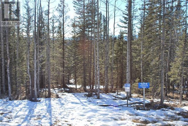 1215 Tamarack Trail