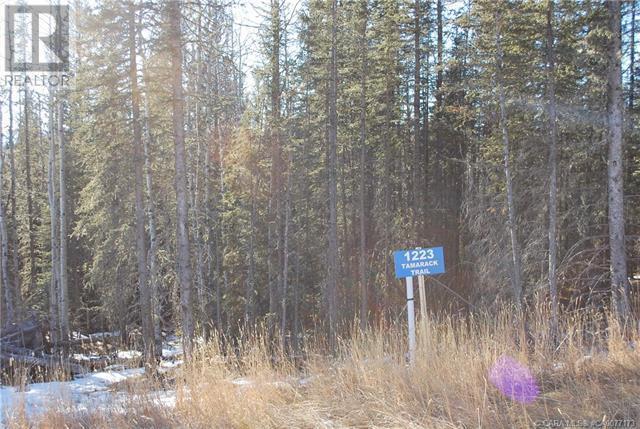 1223 Tamarack Trail